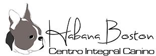 Habana Boston centro veterinario